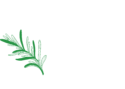 Cedar Tree Hospitality – Catering & Events Services